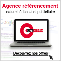 Agence referencement r�gion parisienne